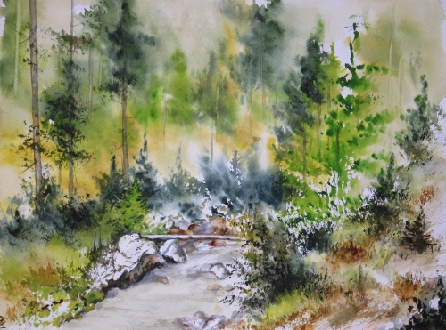 aquarelle,abby,cabane,arbres,forêt,paysage,campagne,sous-bois,rivière,courant,arbres,reflets,rochers