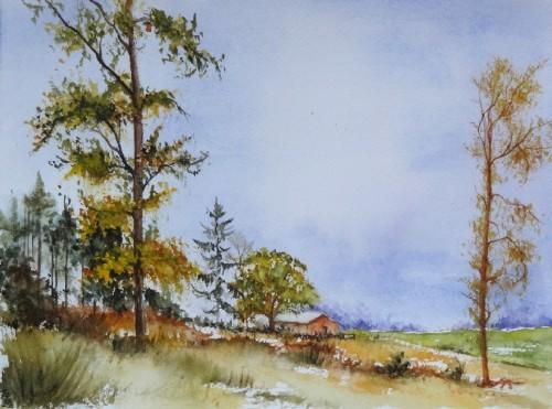 aquarelle,sous-bois,forêt,abres,abby,campagne,roux,automne