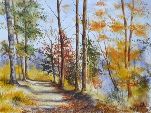 aquarelle,sous-bois,forêt,abres,abby,campagne,chemin,automne