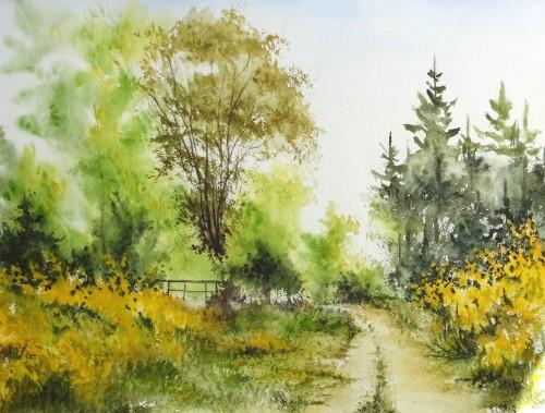 aquarelle,abby,arbres,forêt,paysage,campagne,sous-bois,barrière,chemin,genêts