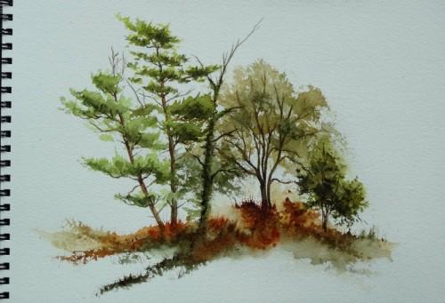 aquarelle,paysage,abby,campagne,arbres,sous-bois,forêt,printemps,automne,village,chemin,ardennes
