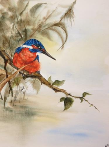 aquarelle,abby,martin pêcheur,oiseau,étang,lac,eau,rivière,arbre,branche