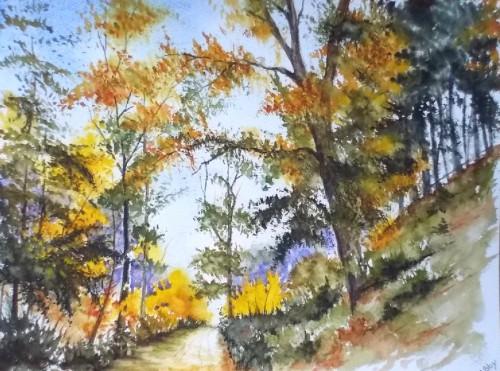 aquarelle,automne,forêt,sous-bois,abby,arbres,paysage,campagne