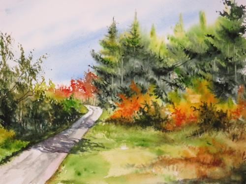 aquarelle,abb,arbres,forêt,paysage,campagne,sous-bois,sapins,automne