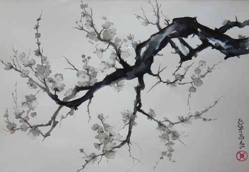 Encre,abby,pruns,branche,arbresumie,encre asiatique,encre chinoise