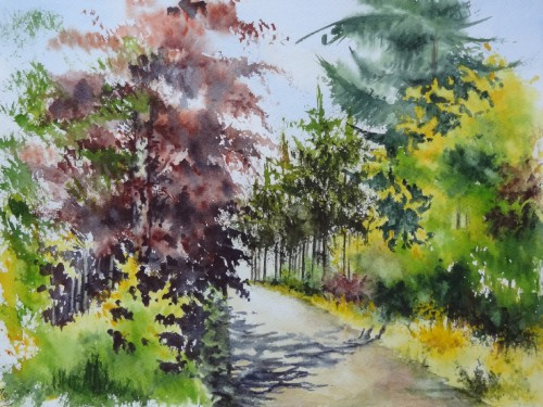 aquarelle,abby,paysage,campagne,forêt,arbres,chemin,route,hêtre,sapin