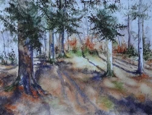 aquarelle,abby,arbres,forêt,paysage,campagne,sous-bois,sapins