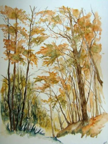 Forêt belge 0708 .jpg