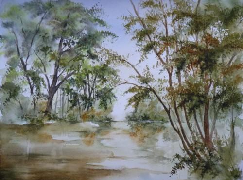 arbres,rivière,lac,reflets,paysage,campagne,aquarelle