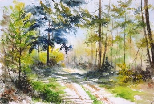 aquarelle,abby,arbres,forêt,paysage,campagne,sous-bois,sapin,chemin,arbres,chêne,hêtre,forêt,printemps,soleil,ombre