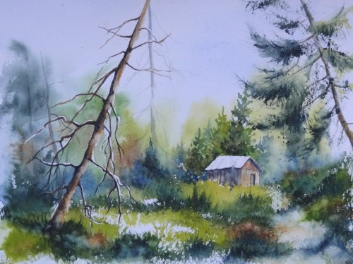 aquarelle,paysage,abby,arbres,montagne,dolomites,alpes,mélèze,cabane,baita