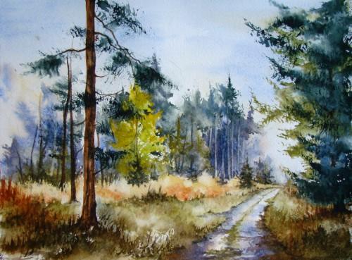 aquarelle,automne,sous-bois,forêt,abres,abby,campagne,