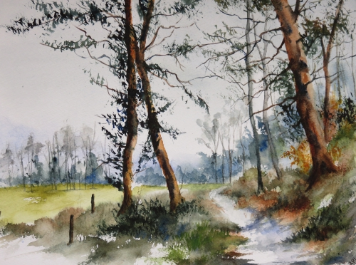 aquarelle,abby,hiver,arbres,forêt,sous-bois,chemin
