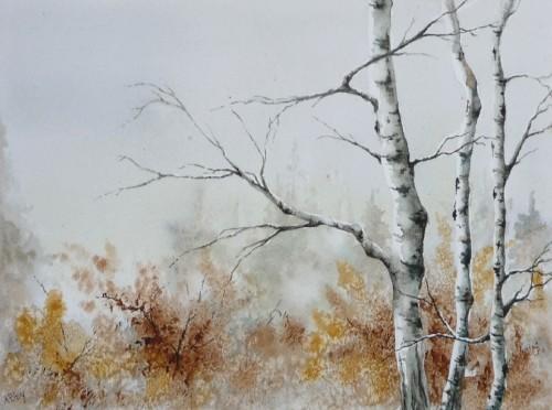 arbres,aquarelle,bouleau,forêt,paysage