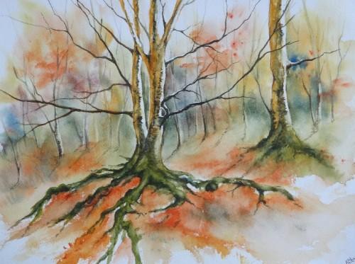 aquarelle,paysage,abby,arbres,sous-bois,forêt,automne,racines