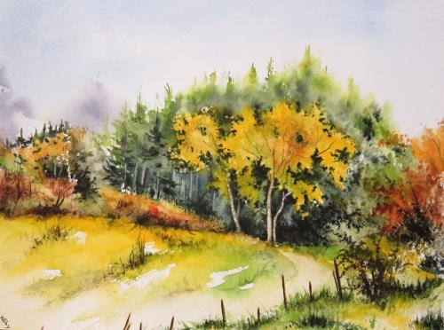 aquarelle,abby,cabane,arbres,forêt,paysage,campagne,sous-bois,automne,sapins