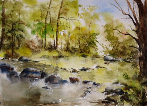 aquarelle,abby,arbres,forêt,paysage,campagne,sous-bois,rivière,eau,rochers,torrent,reflets