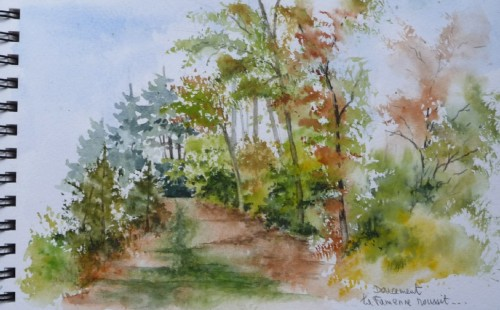 forêt,arbres,chemin,campagne,ardennes