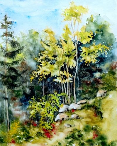Aquarelle,paysage, abby,forêt, sous-bois, nature,arbres,watercolor