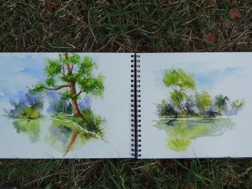 aquarelle,sous-bois,forêt,abres,abby,campagne,croquis,lac,étangs,eau,reflets