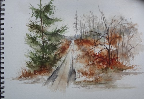aquarelle,croquis,forêt,hiver,neige,ardennes,paysage;abby,chemin,sous-bois,sapin