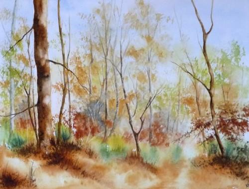 aquarelles,arbres,rivière,paysage,forêt,automne