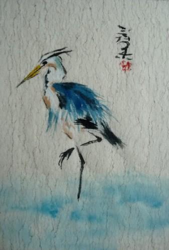 Echassier bleu.jpg