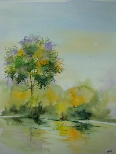 Reflets arbre.JPG