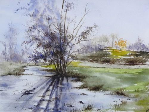 aquarelle,abby,reflets,rivière,arbres,forêt,paysage,campagne,sous-bois,barrière