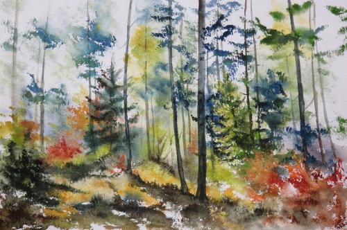 aquarelle,abby,arbres,forêt,paysage,campagne,sous-bois,neige,hiver,arbres,chêne,hêtre