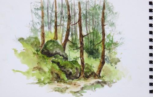 aquarelle,croquis,dolomites,montagne,cabane,abby,sapins,foret,sous-bois,rochers